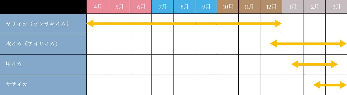 唐津・呼子のイカカレンダー